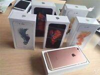 APPLE IPHONE 6s 16GB BRAND NEW BOX GOLD SPACE GREY APPLE WARRANTY & RECEIPT