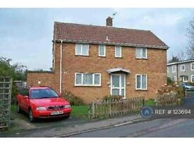 5 bedroom house in Blackthorne Close, Hatfield, AL10 (5 bed)