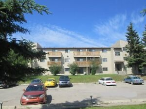 Investment Opportunity! 1 Bedroom Condo - Edson, AB