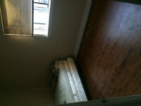 1 Room for rent in a 3 bedroom bungalow.1288 Warden Ave, Toronto