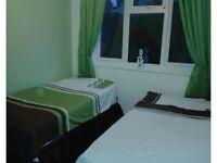 2 X matching Single bedding brown/green NEW!