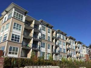 Avail Now Brand New 2 Bdrm / 2 Bth Condo for rent - Langley