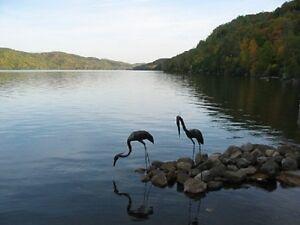 Breath-taking views of the lake; 1 hr. Ottawa Canoe, kayaks