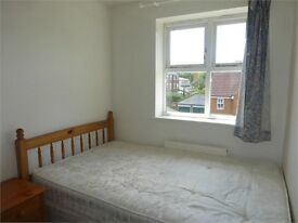 """""""""""TOOTING BEC"""""""" 4 bed house. Immediate move in date! Only £2600/month! Absolute Steal!"""