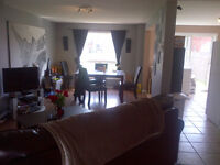 4 Rooms in New house-Sept 1st