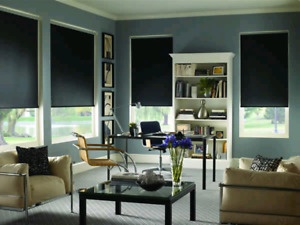 Eclipse Vinyl Shutters and Hunter Douglas Blinds