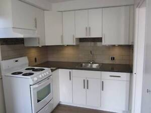$1100/2 br RENOVATED 2 BEDROOM APARTMENT(BURNABY)