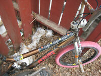 STOLEN: GT BMX - Unique, Old, Many Stickers, Rust on bars.