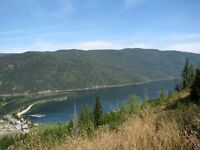 153 Acres of Development Land For Sale in the Shuswap