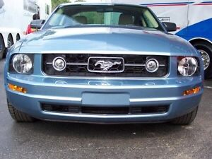 2006 stock mustang grille