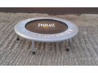 Everlast Mini Trampoline