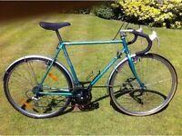 Adult Road Bike