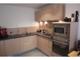 Large 1 bedroom apartment opposite Victoria Station