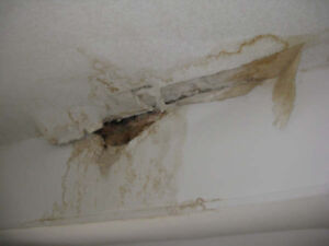 STUCCO/PLASTER REPAIRS,POPCORN REMOVAL & PAINTING,FREE QUOTES**