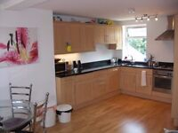 Stunning, one double bedroom Victorian Conversion apartment in Brixton ONLY £300pw!!