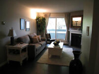 Renovated condo for rent July 1st