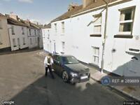 1 bedroom flat in Melville Street, Torquay, TQ2 (1 bed)