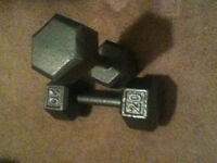 Pair of 20 lbs Dumbbells-Want 15 lbs