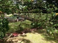 AM Fencing & Gardening services