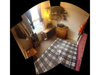 Small double room on cromwell road (£290 + bills)