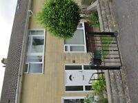 Quiet Student House; 4 beds; modern kitchen; conservatory and small garden; bike storage