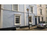 Clifton Village. Single room with desk and storage in professional, clean and tidy maisonette.
