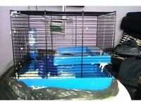 Blue Hamster Cage For Sale (WITH ACCESSORIES)