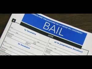 BESOIN TRANSFERT DE BAIL / WANT A LEASE TRANSFER (MONTREAL)
