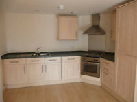 Modern 1 bedroom flat minutes walk form Goodmayes station part dss accepted with guarantor