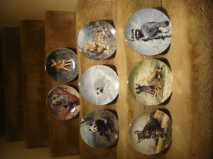 Collector Plates - Nature's Lovables