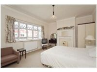 Bright Room To Rent In Manor House Gumtree