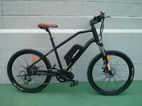 eRanger Electric MID DRIVE Bike 48v 750w