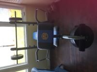 Weight Bench in Excellent Condition