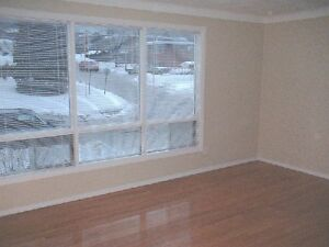 HUGE 1200ft² Bright Hdwd Paint Blinds Etc Reno FREE Extras VIDEO