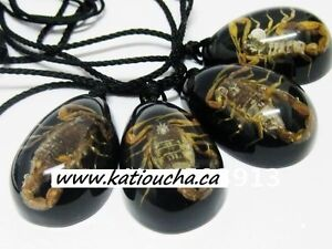 REAL SCORPIONS necklace, Amber FOSSIL