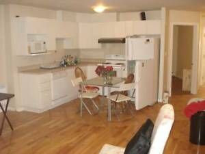 6 1/2 sublet apartment (or individual rooms) in McGill Ghetto