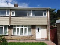 3 bedroomed House to Let in Chapel House Newcastle