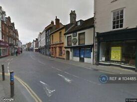 1 bedroom flat in Fye Bridge Street, Norwich, NR3 (1 bed) (#1134485)