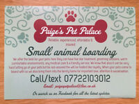 Paige's Pet Palace Small Animal Boarding at affordable prices 🐾❤️ get booked in for xmas 🎄⛄️🎅🏻