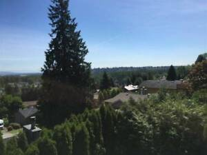 3br - 1500ft2 - Rent- Panoramic View - Coquitlam Cente