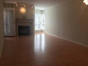 $1100 Large 1 Bedroom 736sqft Near langley Mall.