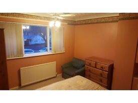 Spacious double room to let in cosy shared house!