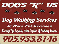 Dog Walking Services