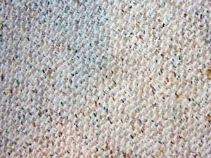 FREE Carpet - 200 Ft2 - Need picked up today December 13, 2018