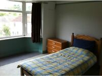 Room available In a friendly shared house in brighton