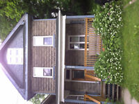 Great Student House Needs Roommates