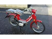 49cc easyrider moped scooter motorbike