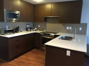 $1700 / 1br - 650ft - Spacious 1 Bed apartment- 18th Floor