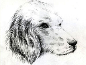 DRAWING FOR YOUNG ARTISTS~LEARN TO DRAW ! Kitchener / Waterloo Kitchener Area image 5