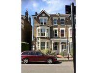 Stunning 2 double bedroom split level loft flat in Brixton Hill